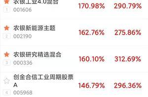 霸榜前三,2020平均收益超160%,初生牛犊赵诣的三只基金