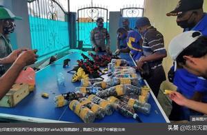 印度尼西亚发现鹦鹉被塞进塑料瓶中