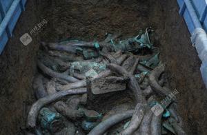 象牙满坑、使用丝绸、青铜器造型奇特精美……三星堆祭祀区新一轮考古发掘成果初现