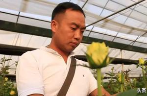 云天化种植牛人——玫瑰种出百万财富