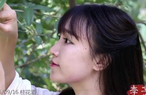 揭秘李子柒电影般高清的视频是怎么做的?