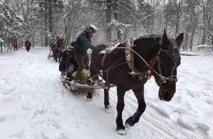 东北大哥卖雪给南方人:9块9一斤,寄送中雪化有两斤辣白菜补偿