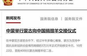 咩,中蒙举行蒙古向中国捐赠羊交接仪式