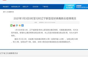 2021年1月3日0时至12时辽宁新型冠状病毒肺炎疫情情况