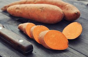 冬天里最美味的烤红薯,我们可以分享给狗狗吗?红薯对狗狗有益吗