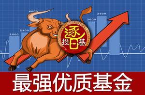 股票买龙头,基金更要买龙头!龙头类主动基金和指数基金这样选