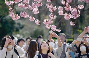 """日媒爆料:日本国内已经出现8例变异,并且开始""""人传人"""""""