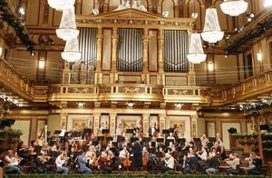 维也纳新年音乐会将如期举行 但无现场观众