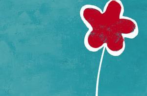 看过《送你一朵小红花》,我们心中每天都会开出一朵花吧