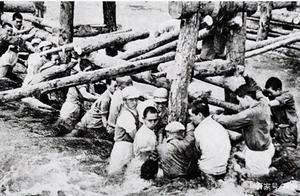 《金刚川》张振智:智斗洪水,勇斗黑寡妇,2400发炮弹打不垮