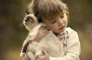 没有这个,别让猫咪和小孩待在一起,会很糟糕