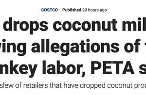 因泰农用猴子摘椰子,美国多家大企业封杀泰国椰子制品