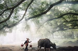 这名英国摄影师镜头下的中国,美得如此动人心弦