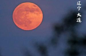 好美!今晚月亮高清图来了