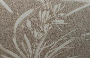 湖北黄石:厉害了,用私家车身灰尘作画 网友说再也不洗车了