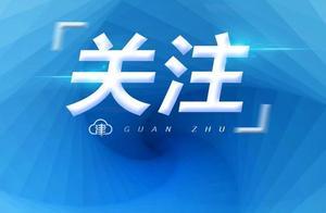 中国新媒体大会:《中国新媒体研究报告2020》发布