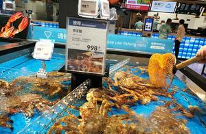 """大肠杆菌超标、生鲜变质…盒马""""舍命狂奔""""后,质量问题频出"""