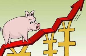 """2021年猪肉又""""变天""""?居民开始抢肉,春节前猪肉价格确定了"""