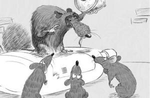 胆大包天!老鼠给猫装铃铛上演现实版:两男子给警车装定位