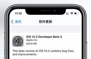 苹果发布iOS14.2Beta3!修复重要问题