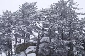 雪落华山,惊艳了全世界
