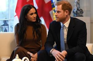 """英媒:因""""仇恨""""言论太多,英国哈里王子夫妇退出社交媒体"""