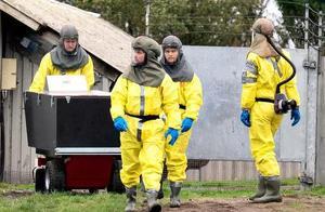 丹麦宣布捕杀1700万只水貂,因发现变异新冠病毒可传人