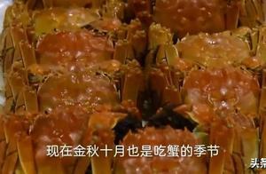 合工大又双叒叕火了!这次竟然是因为螃蟹