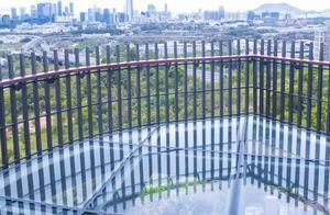 """又发现深圳一个""""空中公园"""",人少景美还自带超惊险玻璃栈道…"""