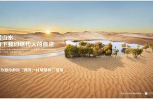 和华为一起,捐赠1株小胡杨,挡住风沙,留住蓝天