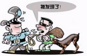 【禁毒一线】景洪交警破获一毒品案,缴毒13.5公斤