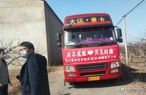疫情下,100吨滞销胡萝卜被一公司收购捐献武汉疫区,事发赵县