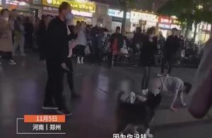 河南郑州一男子当街跪地爬行,身后还有一女子拿鞭子抽打,警方调查后发布通报