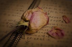 小故事-你是我人生中的温暖的光