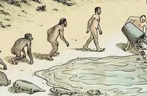 我国科学家发现#5亿年前虾形化石#身体嵌合多种动物的形态特征