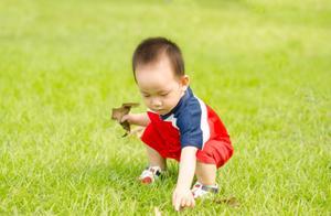 """""""塑料儿童""""时代,孩子脱离大自然,失去灵性又无所适从"""