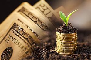 掌众金服:践行普惠金融需做好服务群体下沉