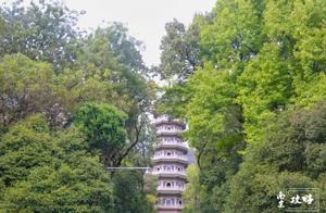 低调的灵谷寺,被我们忽略的金陵秋色