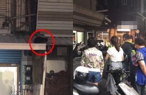 台东知名面店小猫遭摔破头惨死 老板儿子道歉:是猫先咬人