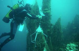 当你潜入一万米深处的海底能看见什么?喝一口那的海水会怎么样?