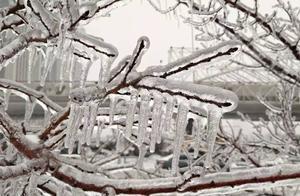 东北的冬天,美的让人窒息