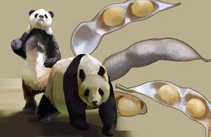 109万吨,中国买家向美国发出大豆订单!为何90%大豆靠进口