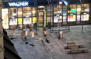 维也纳恐怖袭击致十余人死伤,伊斯兰国报复奥地利!一名暴徒在逃