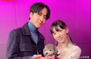 SM娱乐否认少女时代金泰妍和歌手Ravi相恋