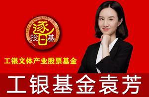 我的基金持仓汇报:袁芳-工银文体产业股票,大消费全能稳健收益