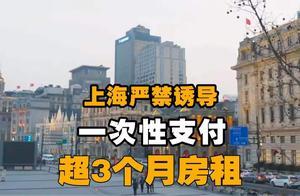 上海严禁诱导一次性支付超3个月房租,能保护租客的利益吗?