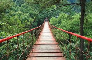 """重庆一""""巨无霸""""公园走红,面积3000亩,被称""""山城绿宝石"""""""