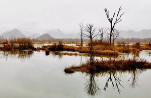 湖北神农架大九湖