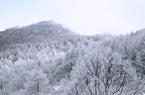 「有福利」清明时节,白石山再现四月飞雪奇观