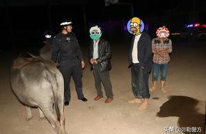 治庸·便民|找耕牛救落水妇女 民警今夜有点忙